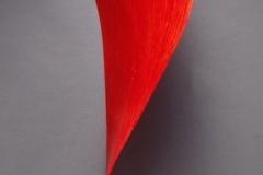 """Red Fall"" 2002 Dorsey Whitney Washington, DC"